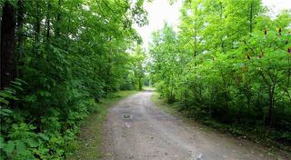 Photo 19: 523 North Mountain Road in Kawartha Lakes: Rural Bexley House (Bungalow) for sale : MLS®# X3898409