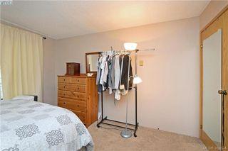 Photo 10: 306 3215 Alder St in VICTORIA: SE Quadra Condo for sale (Saanich East)  : MLS®# 770983