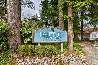 """Photo 20: 41 12711 64 Avenue in Surrey: West Newton Townhouse for sale in """"Palette on the Park"""" : MLS®# R2219294"""