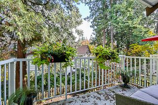 """Photo 17: 41 12711 64 Avenue in Surrey: West Newton Townhouse for sale in """"Palette on the Park"""" : MLS®# R2219294"""
