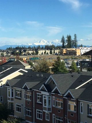 Photo 20: 623 8067 207 Street in Langley: Willoughby Heights Condo for sale : MLS®# R2238286