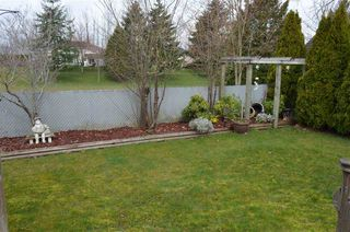 Photo 19: 32221 ROGERS Avenue in Abbotsford: Abbotsford West House for sale : MLS®# R2250216