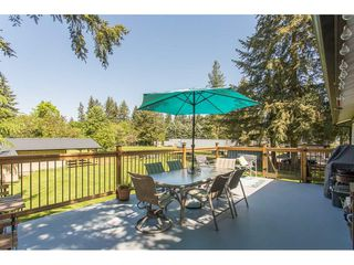 Photo 16: 24117 55 Avenue in Langley: Salmon River House for sale : MLS®# R2269240