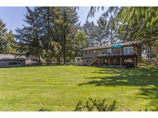 Photo 17: 24117 55 Avenue in Langley: Salmon River House for sale : MLS®# R2269240