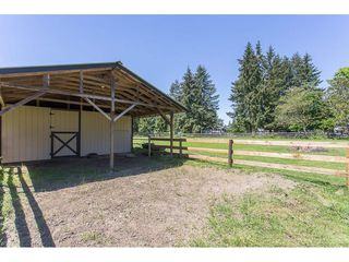 Photo 19: 24117 55 Avenue in Langley: Salmon River House for sale : MLS®# R2269240