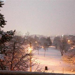 Photo 14: 327 1025 Inverness Rd in VICTORIA: SE Quadra Condo Apartment for sale (Saanich East)  : MLS®# 795865