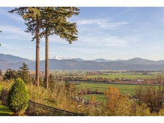 "Photo 17: 74 35287 OLD YALE Road in Abbotsford: Abbotsford East Townhouse for sale in ""The Falls"" : MLS®# R2321916"