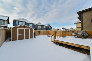 Photo 29: 3683 KESWICK Boulevard in Edmonton: Zone 56 House for sale : MLS®# E4140217