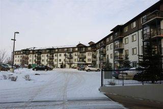 Main Photo: 342 1196 HYNDMAN Road in Edmonton: Zone 35 Condo for sale : MLS®# E4141043
