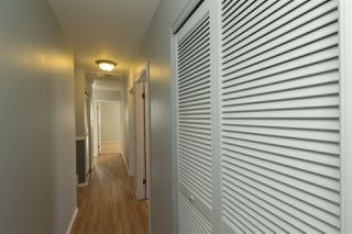 Photo 10: 11204 40 Avenue in Edmonton: Zone 16 House for sale : MLS®# E4143567
