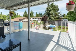 Photo 12: 14771 88 Avenue in Surrey: Bear Creek Green Timbers House for sale : MLS®# R2379953