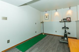 Photo 21: 3812 118 Street in Edmonton: Zone 16 House for sale : MLS®# E4161779