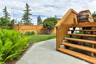 Photo 24: 3812 118 Street in Edmonton: Zone 16 House for sale : MLS®# E4161779