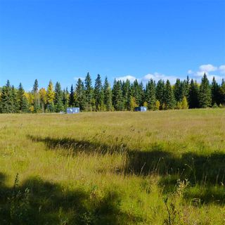 Photo 33: 55001 Twp 465: Rural Wetaskiwin County Rural Land/Vacant Lot for sale : MLS®# E4182412