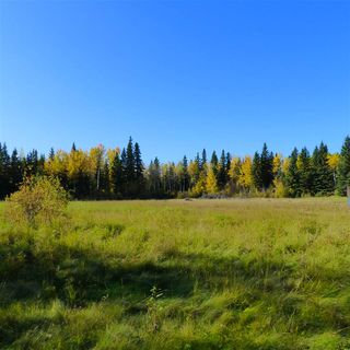 Photo 32: 55001 Twp 465: Rural Wetaskiwin County Rural Land/Vacant Lot for sale : MLS®# E4182412