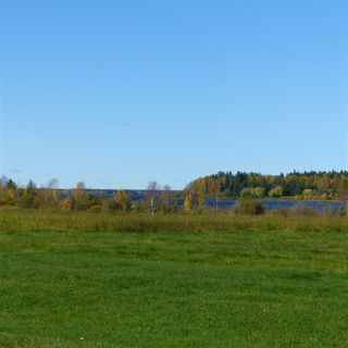 Photo 39: 55001 Twp 465: Rural Wetaskiwin County Rural Land/Vacant Lot for sale : MLS®# E4182412