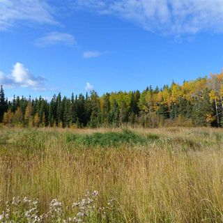 Photo 13: 55001 Twp 465: Rural Wetaskiwin County Rural Land/Vacant Lot for sale : MLS®# E4182412