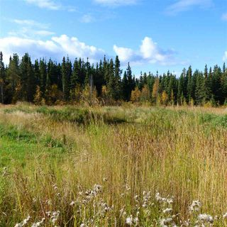 Photo 12: 55001 Twp 465: Rural Wetaskiwin County Rural Land/Vacant Lot for sale : MLS®# E4182412