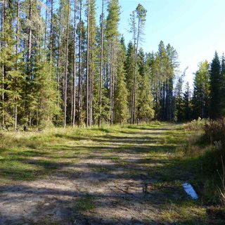 Photo 22: 55001 Twp 465: Rural Wetaskiwin County Rural Land/Vacant Lot for sale : MLS®# E4182412