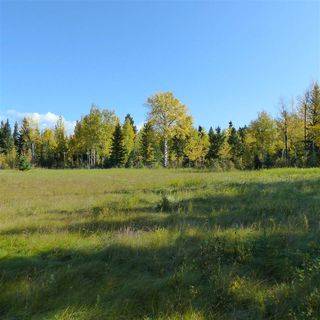 Photo 34: 55001 Twp 465: Rural Wetaskiwin County Rural Land/Vacant Lot for sale : MLS®# E4182412