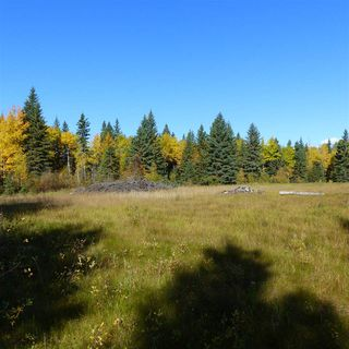 Photo 35: 55001 Twp 465: Rural Wetaskiwin County Rural Land/Vacant Lot for sale : MLS®# E4182412
