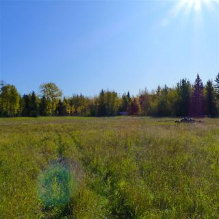 Photo 28: 55001 Twp 465: Rural Wetaskiwin County Rural Land/Vacant Lot for sale : MLS®# E4182412
