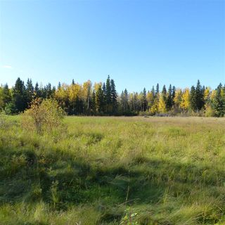 Photo 31: 55001 Twp 465: Rural Wetaskiwin County Rural Land/Vacant Lot for sale : MLS®# E4182412