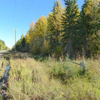 Photo 25: 55001 Twp 465: Rural Wetaskiwin County Rural Land/Vacant Lot for sale : MLS®# E4182412
