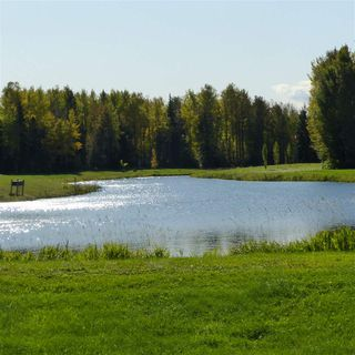 Photo 40: 55001 Twp 465: Rural Wetaskiwin County Rural Land/Vacant Lot for sale : MLS®# E4182412