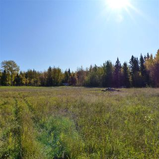 Photo 29: 55001 Twp 465: Rural Wetaskiwin County Rural Land/Vacant Lot for sale : MLS®# E4182412