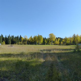 Photo 26: 55001 Twp 465: Rural Wetaskiwin County Rural Land/Vacant Lot for sale : MLS®# E4182412
