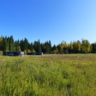Photo 30: 55001 Twp 465: Rural Wetaskiwin County Rural Land/Vacant Lot for sale : MLS®# E4182412