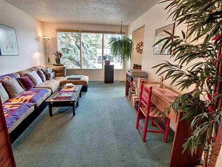 Photo 7: 5 GARDEN Crescent: Sherwood Park House for sale : MLS®# E4204135