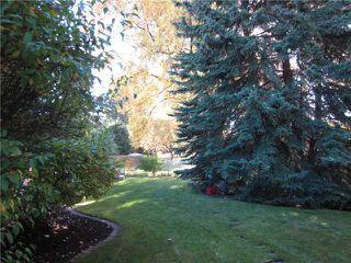 Photo 20: 140 MAPLEBURN Drive SE in CALGARY: Maple Ridge Residential Detached Single Family for sale (Calgary)  : MLS®# C3495102