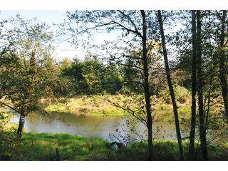 "Photo 17: 2 23281 KANAKA Way in Maple Ridge: Cottonwood MR Townhouse for sale in ""WOODRIDGE"" : MLS®# V1032160"