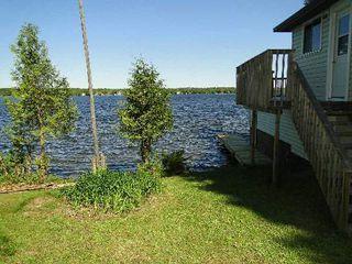Photo 5: 93 Mckelvey Road in Kawartha Lakes: Rural Eldon House (Bungalow) for sale : MLS®# X2851295