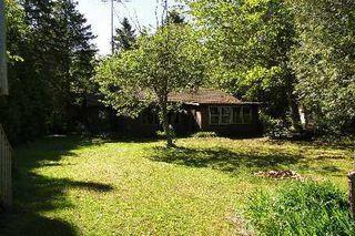 Photo 1: 93 Mckelvey Road in Kawartha Lakes: Rural Eldon House (Bungalow) for sale : MLS®# X2851295