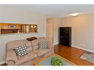 Photo 19: 223 31 Avenue NW in Calgary: Tuxedo Park House for sale : MLS®# C4072300