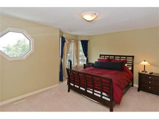 Photo 11: 223 31 Avenue NW in Calgary: Tuxedo Park House for sale : MLS®# C4072300
