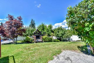 Photo 16: 9759 PRINCESS Drive in Surrey: Royal Heights House for sale (North Surrey)  : MLS®# R2092868