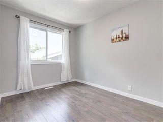 Photo 21: 75 WHITMAN Crescent NE in Calgary: Whitehorn House for sale : MLS®# C4074326
