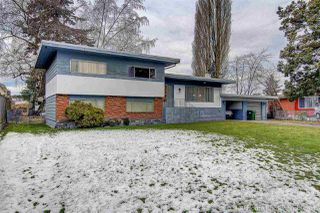 """Photo 20: 4231 WOODHEAD Road in Richmond: East Cambie House for sale in """"East Cambie"""" : MLS®# R2131131"""