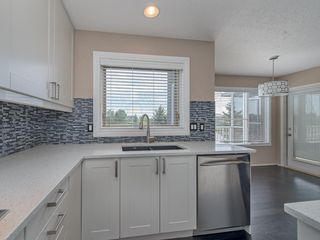 Photo 20: 167 LAKESIDE GREENS Court: Chestermere House for sale : MLS®# C4120469