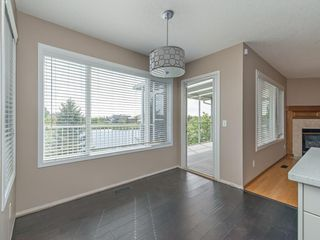Photo 23: 167 LAKESIDE GREENS Court: Chestermere House for sale : MLS®# C4120469