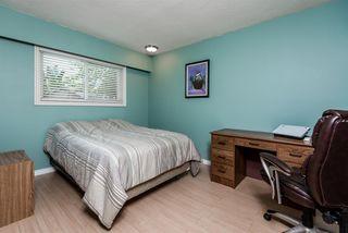 Photo 13: 11754 STEEVES STREET in Maple Ridge: Southwest Maple Ridge House for sale : MLS®# R2178109