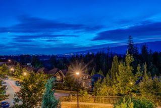 Photo 34: 22868 137 Avenue, Maple Ridge in Maple Ridge: Silver Valley House for sale : MLS®# R2192745