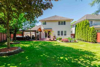 Photo 17: 21060 86 Avenue in Langley: Walnut Grove House for sale : MLS®# R2199071