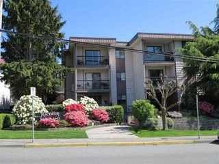 Photo 19: 311 1442 BLACKWOOD STREET in South Surrey White Rock: Home for sale : MLS®# R2056321