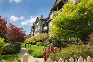 """Photo 14: 403 250 SALTER Street in New Westminster: Queensborough Condo for sale in """"PADDLERS LANDING"""" : MLS®# R2260879"""