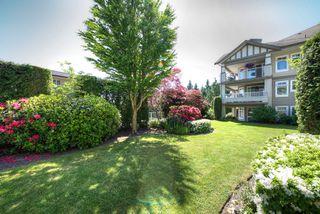 Photo 17: 309 4770 52A Street in Delta: Delta Manor Condo for sale (Ladner)  : MLS®# R2271731